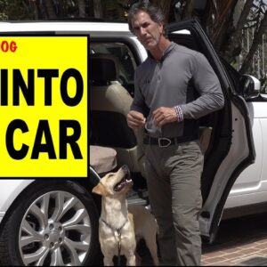 Teach Your Dog to Get into the CAR - Dog Training Video